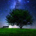 青い空に木